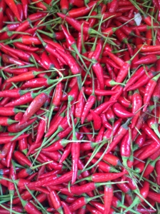 Chillis at the market